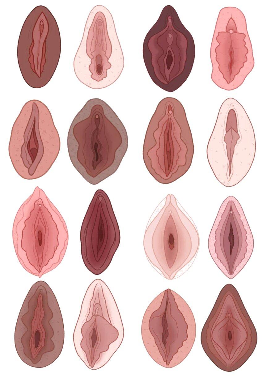 vaginas de segunda mano